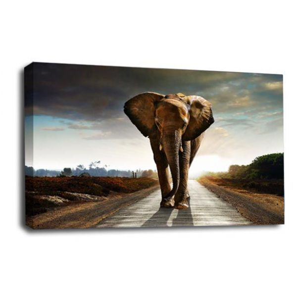 The Long Walk Home Elephants Wall Art Picture